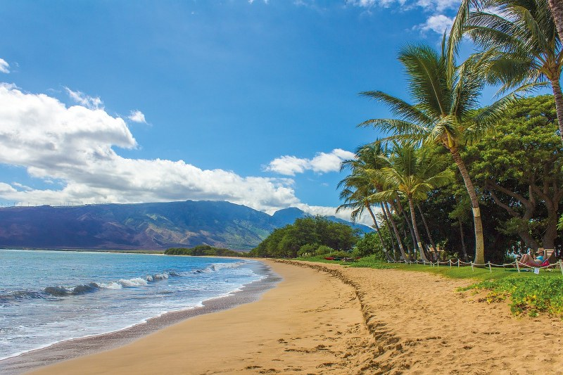 ledolcinanne-hawaii_800x533